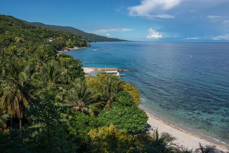 Oslob - Cebu Island - The Philippines - Banana Journey